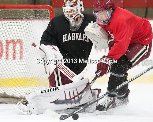 Raphael Girard (Harvard - 30), Jimmy Vesey (Harvard - 19) - The Harvard University Crimson practiced on Friday, October 22, 2013, at Bright-Landry Hockey Center in Cambridge, Massachusetts.