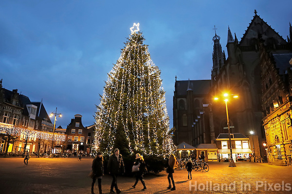 Nederland Haarlem  2016. Kerstboom op de Grote Markt. Sint Bavo kerk. Foto Berlinda van Dam / Hollandse Hoogte
