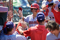 Harrisburg Senators Tres Barrera (13) high fives teammates after hitting a home run during an Eastern League game against the Erie SeaWolves on June 30, 2019 at UPMC Park in Erie, Pennsylvania.  Erie defeated Harrisburg 4-2.  (Mike Janes/Four Seam Images)