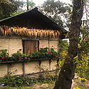 India - Sikkim - A traditional house located in the jungle.