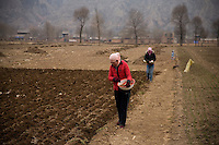 Women plant seeds in a freshly-plowed field outside Linxia, Gansu, China.