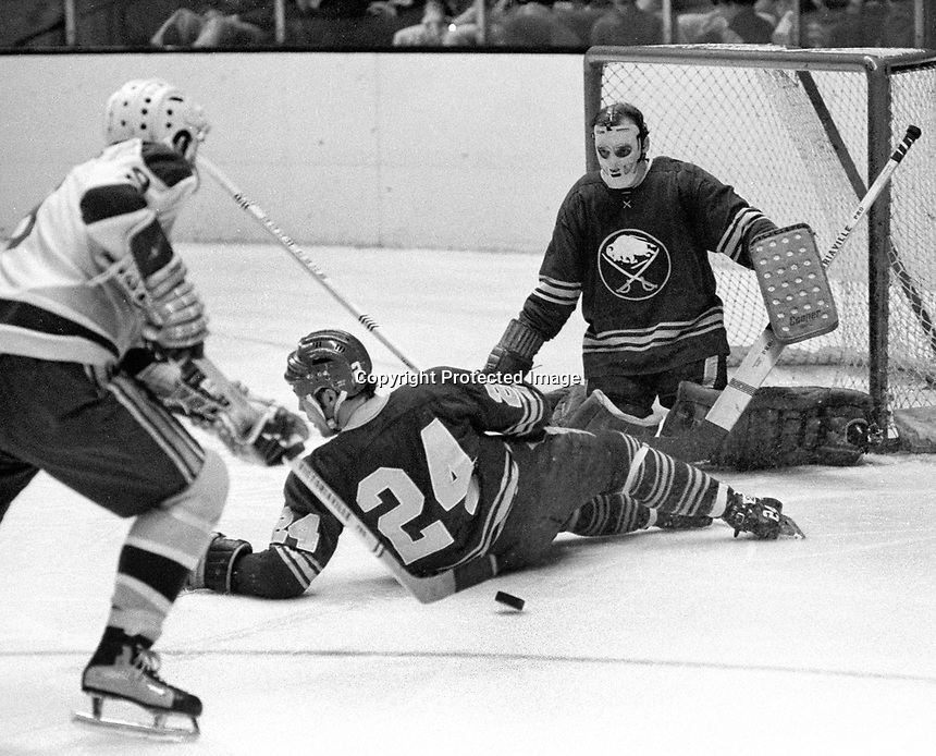 Seals Bill Hicke , Buffalo Sabre Chris Evans on ice, and goalie Roger Crozier.(1871 photo/Ron Riesterer)