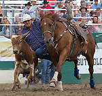 Wade Sumpter from Fowler, CO competes in the steer wrestling event  during the Reno Rodeo in Reno, Nevada on Sunday, June 19, 2016.