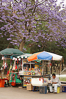 Vendors in Chapultepec Park in Mexico City