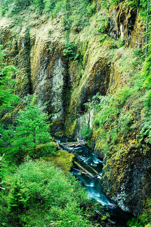 Multnomah Creek flowing through canyon just downstream from Multnomah Falls, Columbia River Gorge National Scenic Area, Oregon, USA