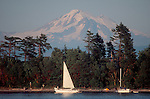 San Juan Islands, Clark Island, Mount Baker in the distance, Puget Sound, Washington State Marine Park, camping, anchored sailboats, summer,.