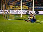 Nederland, Waalwijk, 24 november 2012.Eredivisie.Seizoen 2012-2013.RKC Waalwijk-FC Groningen (1-1).Ard van Peppen van RKC Waalwijk juicht nadat hij de gelijkmaker heeft gemaakt