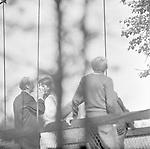 Безумие (1968)