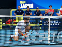 8th January 2020; RAC Arena, Perth, Western Australia; ATP Cup Australia, Perth, Day 6; Spain versus Japan; Pablo Carreno Busta of Spain waits at the net during the doubles against Japan - Editorial Use