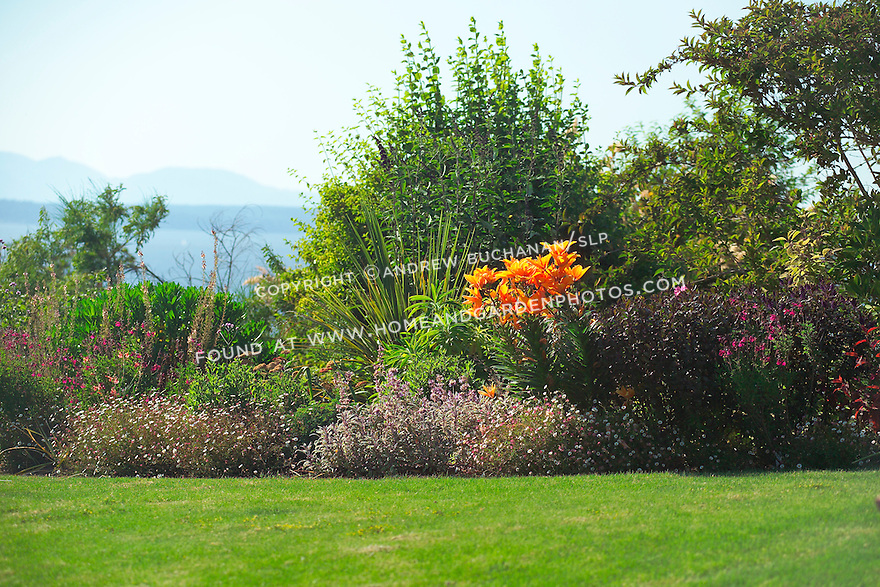 The Pacific Northwest receives surprisingly little rainfall in the summer, so gardens need plants that can withstand long sunny, dry spells. This west-facing garden overlooking Puget Sound was designed with just these kinds of summers in mind and utilizes plant species more often thought of in an arid, Mediterranean climate.