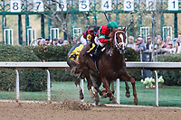 HOT SPRINGS, AR - March 18: Malagacy #6 and jockey Javier Castellano win the Rebel Stakes (Gr.2) at Oaklawn Park on March 18, 2017 in Hot Springs, AR. (Photo by Ciara Bowen/Eclipse Sportswire/Getty Images)