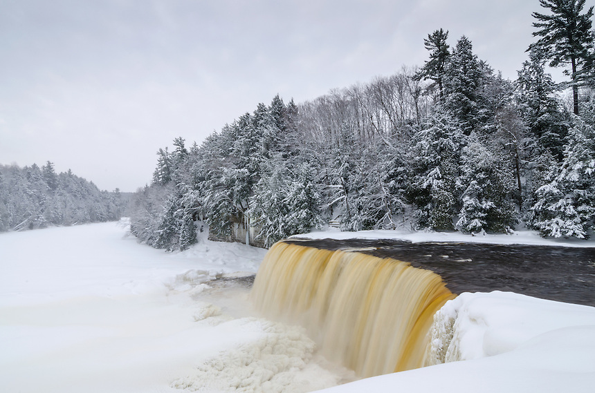 Looking downriver of Tahquamenon Falls. Michigan's Upper Peninsula