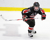 Alyssa Wohlfeiler (NU - 8) - The Harvard University Crimson defeated the Northeastern University Huskies 1-0 to win the 2010 Beanpot on Tuesday, February 9, 2010, at the Bright Hockey Center in Cambridge, Massachusetts.