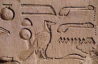 Afrique/Egypte/Env d'Assouan: Le temple de Kôm Ombo - Partie du temple consacrée à Harodéris (dieu faucon)