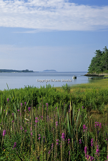 View of water at high tide in Georgetown, Maine, USA, looking South toward Seguin Island and the Atlantic Ocean.