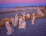 Mono Basin Scenic Area, CA<br /> Tufa towers on the gravel beach on Mono Lake's south shore under a pastel colored sky at dusk