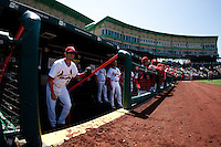 Jose Garcia (3) of the Springfield Cardinals stands in the dugout prior to a game against the /f/ on April 16, 2011 at Hammons Field in Springfield, Missouri.  Photo By David Welker/Four Seam Images
