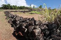 Pu'u O Mahuka Heiau, Pupukea, Oahu