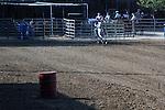 MFHS Barrels Rider 330