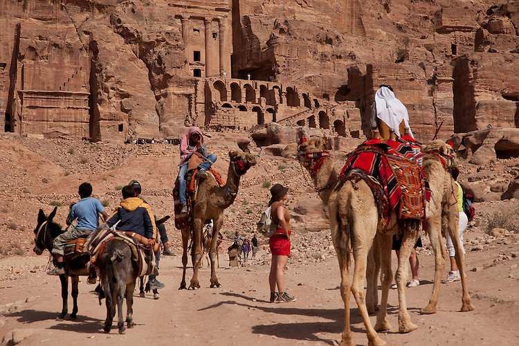 Camels and mules make up the transportation choices at Petra, Jordan
