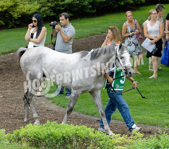 Grilla before The Sheika Zayed Bin Sultan Al Nahyan Arabian Cup Open at Delaware Park on 7/2/11