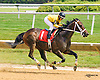 Seal Team Four winning at Delaware Park on 6/27/16