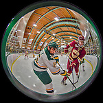 2016-02-20 NCAA: Boston College at Vermont Men's Hockey