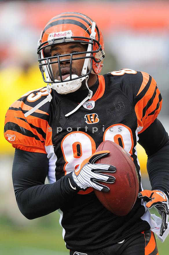 ANTONIO CHATMAN, of the Cincinnati Bengals  in action against the Philadelphia Eagles during the Bengals  game in Cincinnati, Ohio on November 16, 2008..The game ended in a tie 13-13