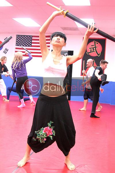 """Bai Ling<br /> Sexy Sword Training for her new film """"Samurai Cop 2,"""" Musa Martial Arts Academy, Los Angeles, CA 12-16-14<br /> David Edwards/Dailyceleb.com 818-249-4998"""