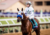DEL MAR, CA - NOVEMBER 03: Battle of Midway #9 with Flavien Prat returns victorious after winnings the Breeders' Cup Dirt Mile at Del Mar Thoroughbred Club on November 03, 2017 in Del Mar, California. (Photo by Alex Evers/Eclipse Sportswire/Breeders Cup)
