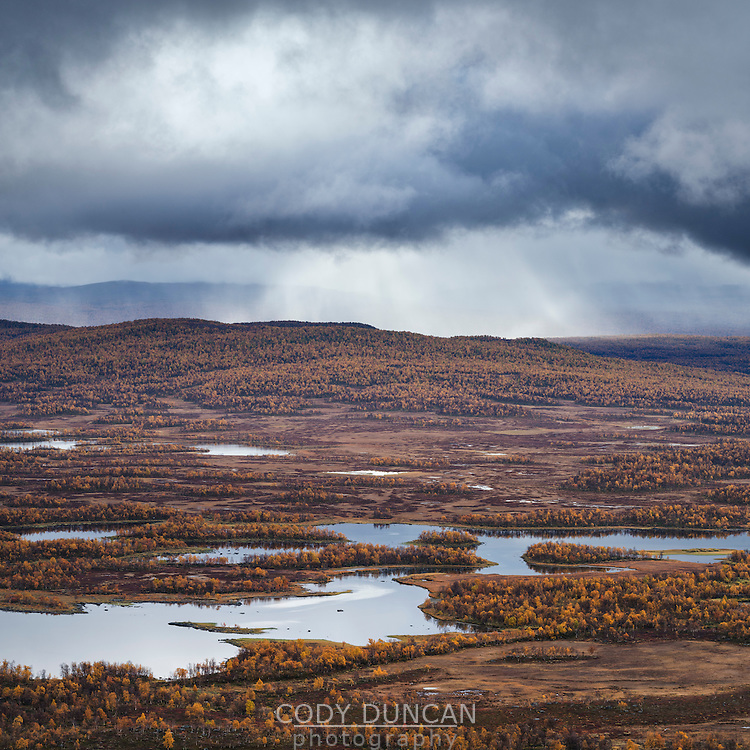Islands and autumn colors of lake Tärnasjön, Kungsleden trail, Lapland, Sweden