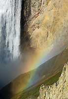 Lower Yellowstone Falls and rainbow from Inspiration Point-Yellowstone National Park, Wyoming