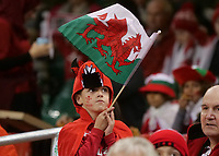 A young welsh fan prior to kick off <br /> <br /> Photographer Ian Cook/CameraSport<br /> <br /> Under Armour Series Autumn Internationals - Wales v Tonga - Saturday 17th November 2018 - Principality Stadium - Cardiff<br /> <br /> World Copyright © 2018 CameraSport. All rights reserved. 43 Linden Ave. Countesthorpe. Leicester. England. LE8 5PG - Tel: +44 (0) 116 277 4147 - admin@camerasport.com - www.camerasport.com