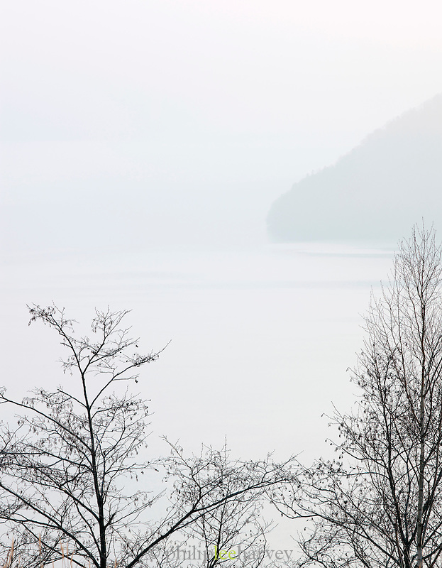 Trees at Lake T?ya, in Shikotsu-T?ya National Park, a national park in the central part of the island of Hokkaid?, Japan