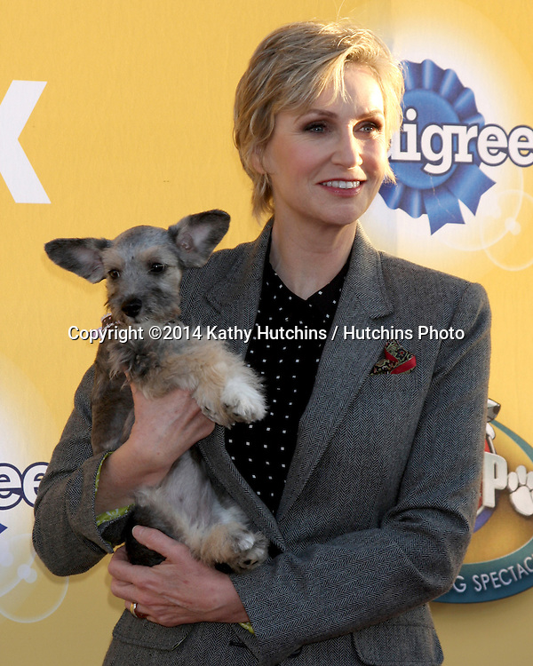 "LOS ANGELES - NOV 22:  Jane Lynch at the FOX's ""Cause for Paws:  All-Star Dog Spectacular"" at the Barker Hanger on November 22, 2014 in Santa Monica, CA"