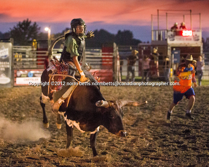 The RAM Rodeo Tour, 24&25 August, 2012, in Dresden, Ontario, Canada..photo©2012 by Norm Betts.normbetts@canadianphotographer.com.416 460 8743