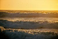 California, Santa Cruz County, Pacific Ocean at sunset