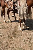 USA, Nevada, Wells, guests prepare to head out on a Horse-Back riding excursion at Mustang Monument, A sustainable luxury eco friendly resort and preserve for wild horses, Saving America's Mustangs Foundation