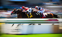 Racing action Pacific Classic Day at Del Mar Race Course in Del Mar, California on August 26, 2012.