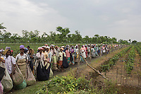 India – West Bengal: Pluckers at Mogulkata Tea Estate, in the Dooars region, waiting for their load of tea leaves to be weighed. Every plucker is then given a small piece of paper where the number of kilos of collected leaves are noted.