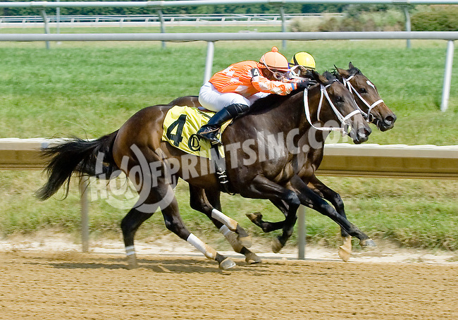 A and Out winning at Delaware Park on 7/4/12