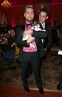 LOS ANGELES, CA - NOVEMBER 9: Lance Bass, at the 2nd Annual Vanderpump Dog Foundation Gala at the Taglyan Cultural Complex in Los Angeles, California on November 9, 2017. Credit: November 9, 2017. <br /> CAP/MPI/FS<br /> &copy;FS/MPI/Capital Pictures