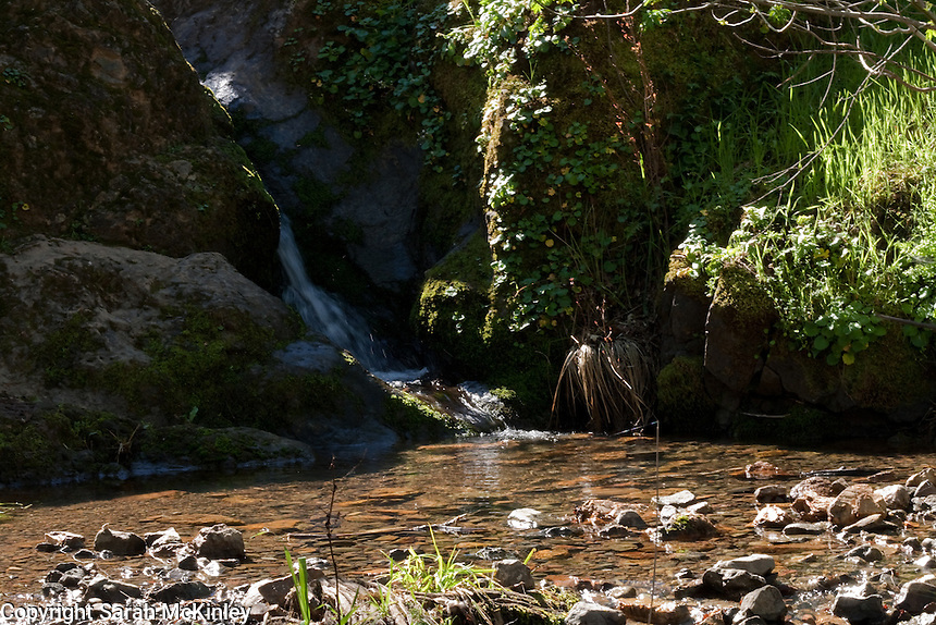 A small waterfall flows from the shadows to a sunlit pool in Low Gap Park in Ukiah in Mendocino County in Northern California.