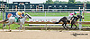 Clearly Goods winning at Delaware Park on 8/29/2013