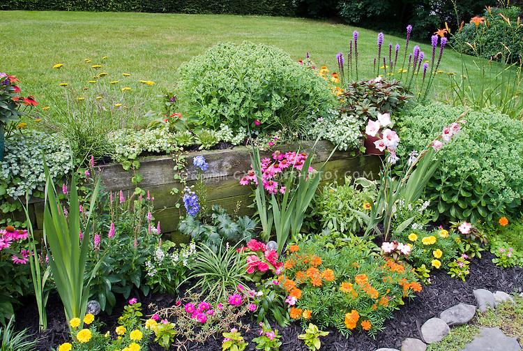 Sarah street j054473g plant flower stock photography mix of annual and perennial flowers in backyard garden impatiens marigolds liatris mightylinksfo