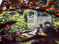 Beautiful Yards <br /> <br /> Christine Rail<br /> 1677 Blackwell Road<br /> <br /> From bare land  to wonderful lush trees and gardens, it all took  shape along with our different stage of life. I love to see the clematis growing through the trees, the wisteria growing on our pergola or all the  different kind of  hydrangeas either climbing the arbor or showing their beautiful clusters of flowers. Along with being done with love, it was also very therapeutic. <br /> Christine Rail