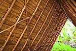 Close up of the roof structure of Halau, Puʻuhonua o Hōnaunau National Historical Park, Big Island, Hawaii.
