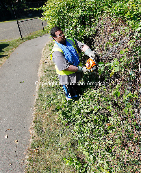 Waterbury, CT-11 July 2012-071112CM05-  Anthony Washington 19, from the Waterbury Police Activity League (PAL) Park Corp Work Group, trims brush from along a pathway at Schofield Park Wednesday morning in the Bunker Hill section of Waterbury.  The group along with the Waterbury Parks Department has been cleaning up the city parks.  Yesterday's focus was on Schofield Park where crews cleared back the walking path, picked litter and weed whacked said Mark Lombardo, the City's horticulturalist.     Christopher Massa Republican-American
