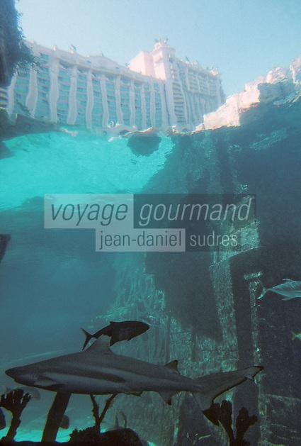 Iles Bahamas / New Providence et Paradise Island / Nassau: Hotel Atlantis à Paradise Island vu depuis les aquariums géants qui contiennet plusieurs millers de poissons dont cent requins