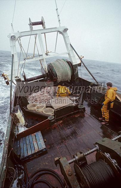 """Europe/France/Bretagne/29/Finistère/Le Guilvinec: Pêche en mer sur le """"Samouraï"""""""